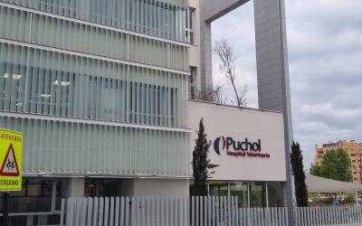 Señalética completa del Hospital veterinario Puchol